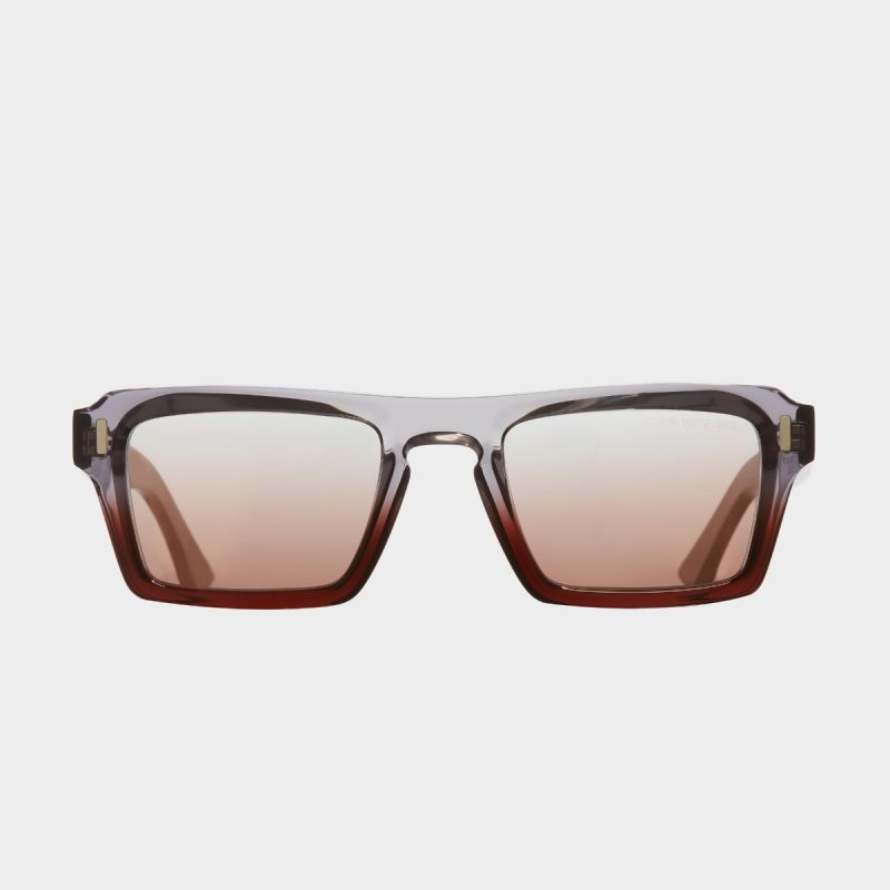 1318 D-Frame Sunglasses