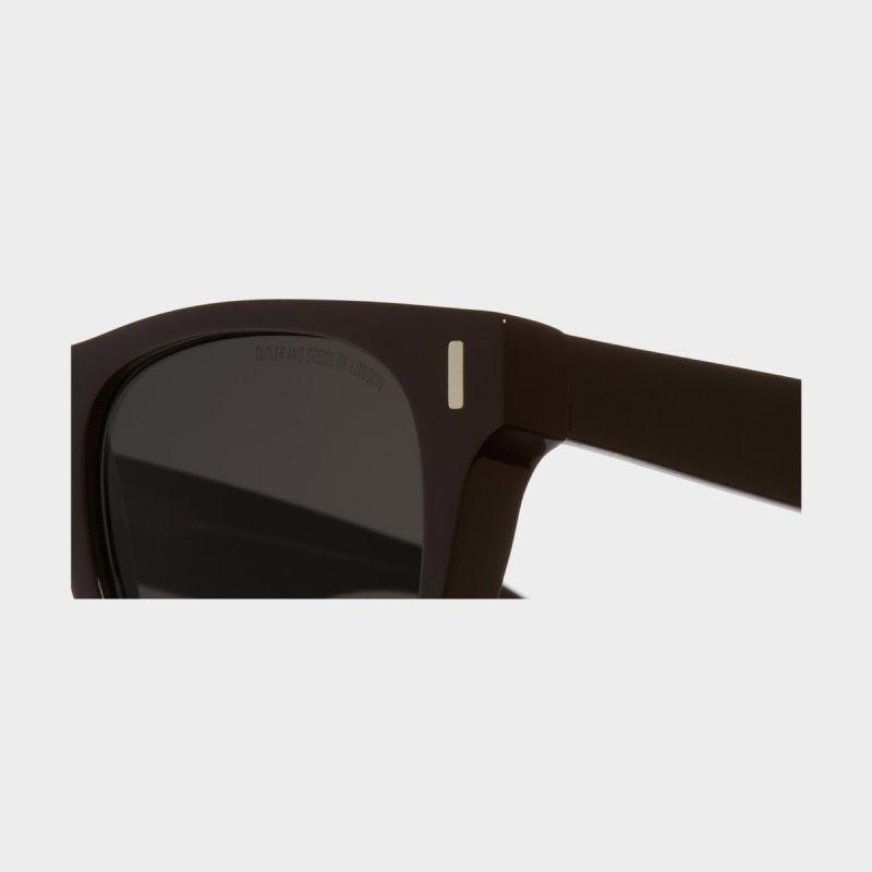 1339 D Frame Sunglasses