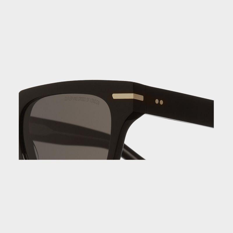 1354 D Frame Sunglasses