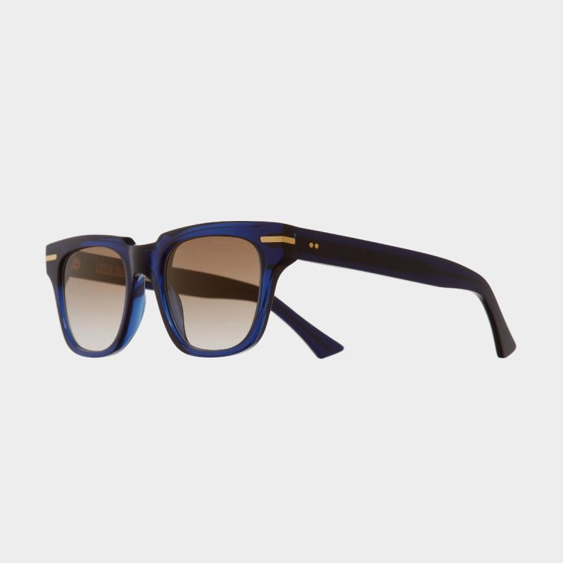 1355 D Frame Sunglasses